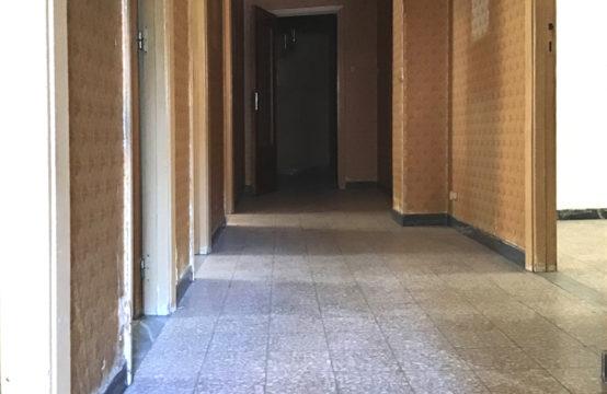 San Benedetto, Ampio Trivano Biservizi